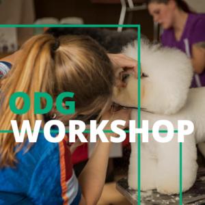 ODG Workshop