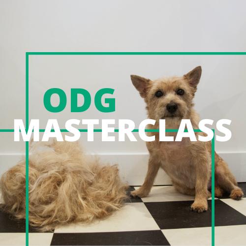ODG Masterclass